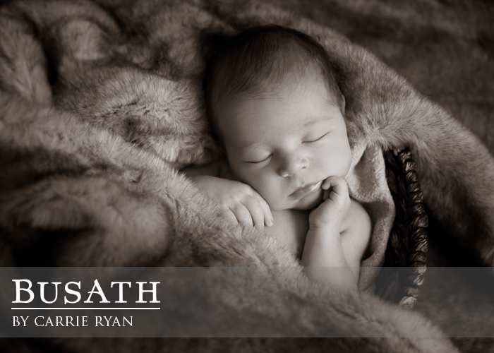 Newborn Baby Photography, Salt Lake City Utah